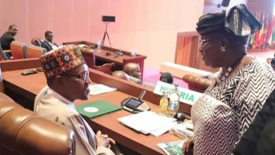 Photo of Buhari government will ensure Okonjo-Iweala wins WTO battle — ministry