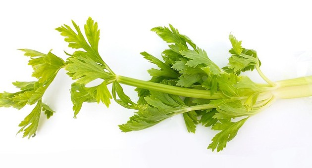 Celery Health Benefits | Celery Amazing Facts