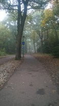 Path to uni