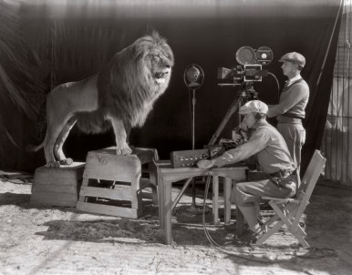 Amazing Historical Photos Pictures Incredible Mindblowing Photograph Old History Crazy Weekly Show MGM Lion