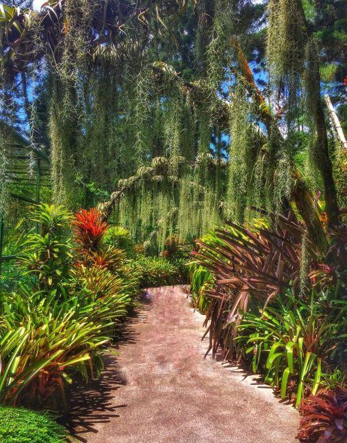Botanical Gardens3