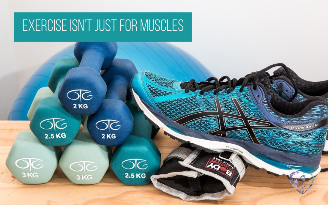 Exercise Isn't Just For Muscles