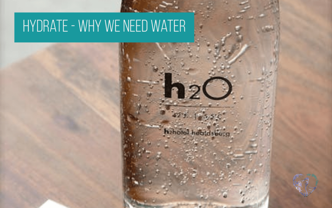 Hydrate – Why We Need Water