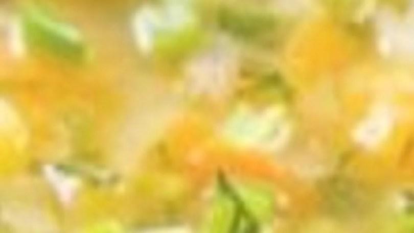 Tortilla-Ball Soup - Sopa de Bolitas de Tortilla