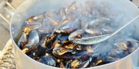 Moules Marinière - TheRecipe.Website