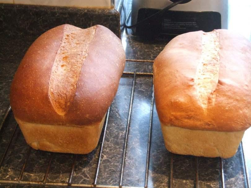 Fresh Bread - TheRecipe.Website