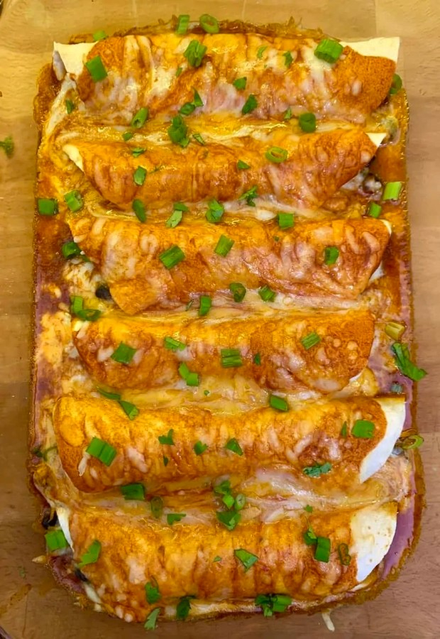 chicken enchiladas easy recipe