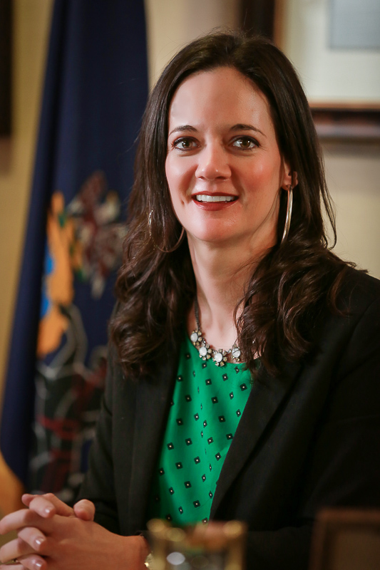 Stephanie Borowicz Announces Campaign For State House The Record Online