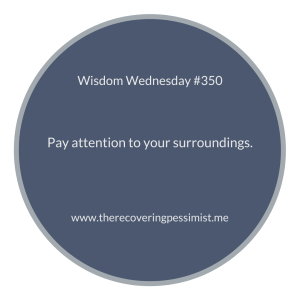 The Recovering Pessimist | Wisdom Wednesday #350 | http://t