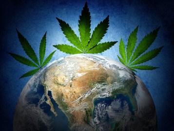 marijuana-globe-141017