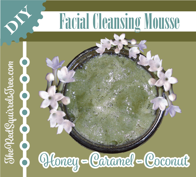 DIY Honey Caramel Coconut Facial Cleansing Mousse