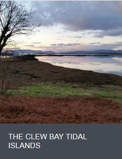 Tidal Islands