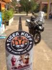 Tiger Koff
