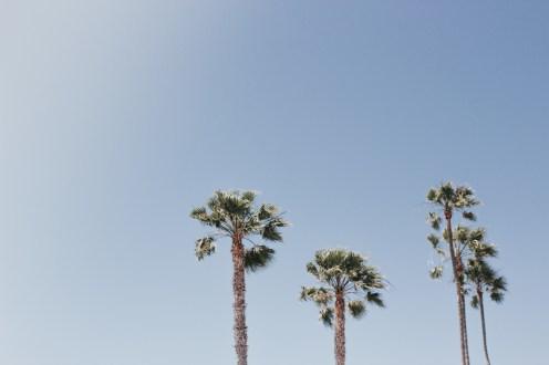 Beach THings-1