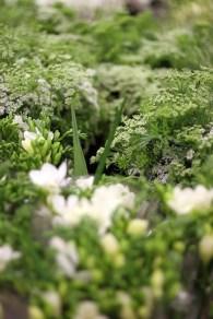 White & Green at the Flower Market