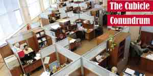 The Cubicle Conundrum
