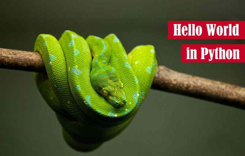Hello World in Python Featured Image