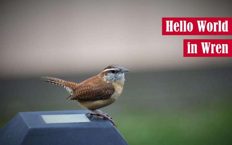 Hello World in Wren Featured Image