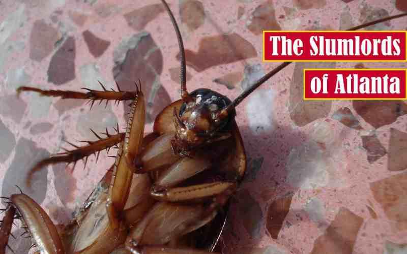 The Slumlords of Atlanta Premium Featured Image