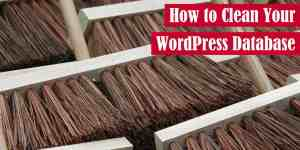 How to Clean Your WordPress Database