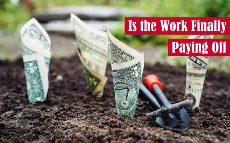 Is the Work Finally Paying Off Featured Image