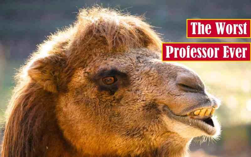 The Worst Professor Ever Premium Featured Image