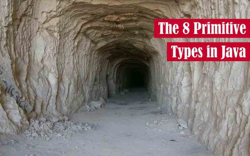 The 8 Primitive Types in Java Featured Image