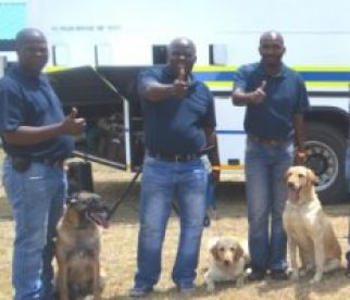 Police dogs and their handlers at the Tamboekie Fest over the weekend  Picture: SUPPLIED