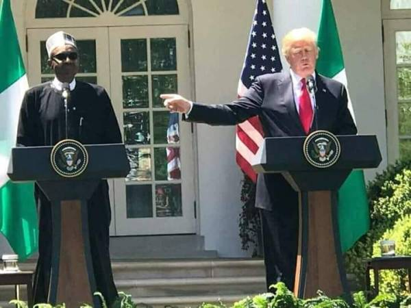 Trump-and-Buhari