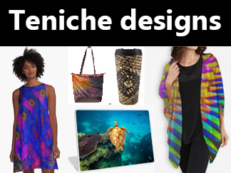 Teniche designs