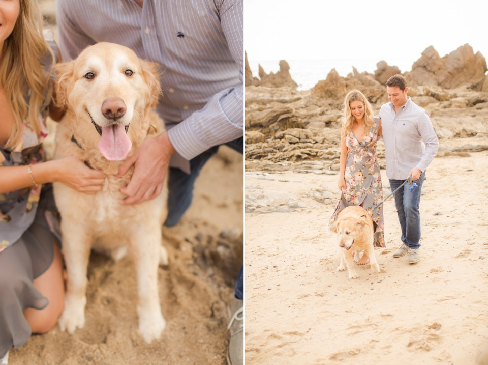 Beach engagement session with puppy image