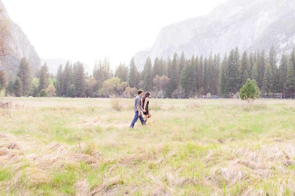 Yosmite National Park Engagement Session
