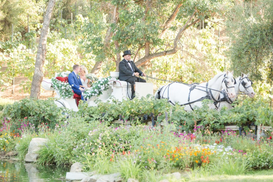 Southern California Wedding Photographer Bride and Groom in horse and carriage by Theresa Bridget Photography