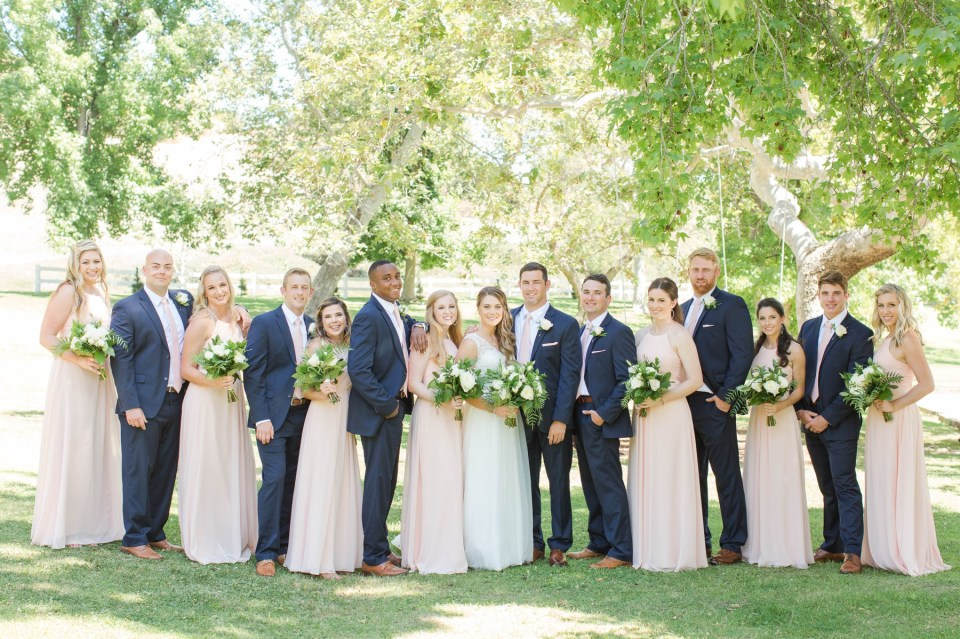 Wedding party with navy suits and blush bridesmaid dresses on the lawn at the Coto Valley Country Club.