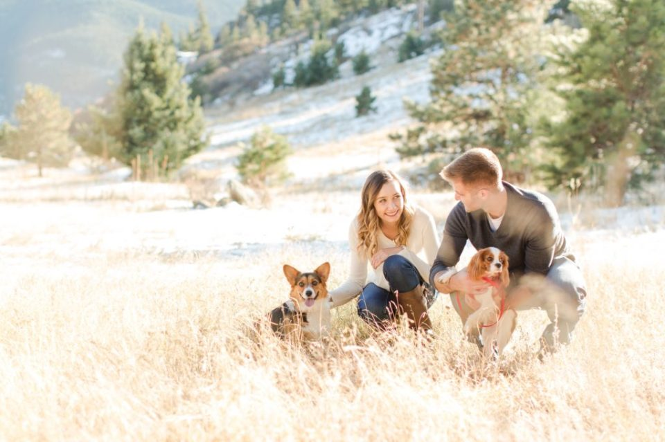 Corgi with it's owners at Mt. Falcon in Jefferson county Colorado.