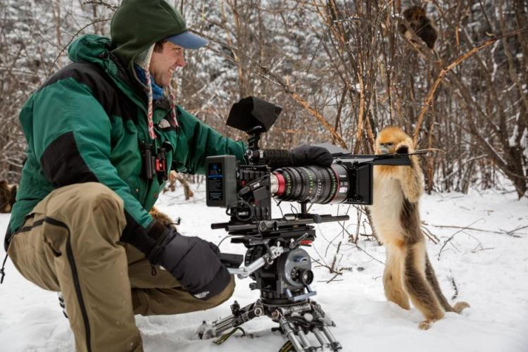 When you see behind the scenes footage, it's incredible to see how close the filmmakers were to the animals.