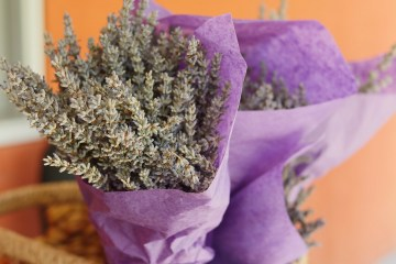 Lavender Bouquet From Soleado Lavender Farm, A Must-Visit Destination In Montgomery County, Maryland