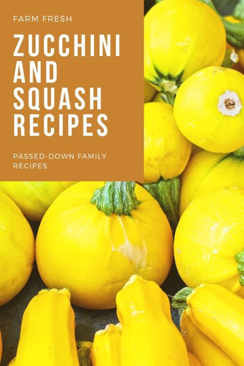 Farm Fresh Zucchini and Squash Recipes - Theresa's Reviews