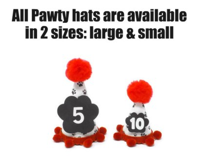 Personalized Dog Birthday Hats, Misfit Manor Shop