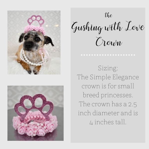 Dog Crown, Dog Birthday Hat, Barkday Party, Misfit Manor Shop