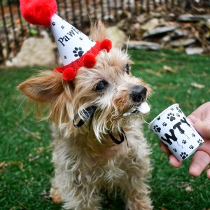 Dog Birthday Party Hat, Pupperccino Cup, The Misfit Manor Shop