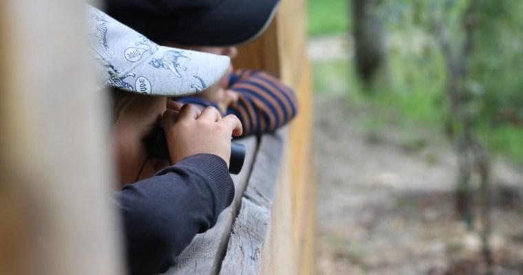 Le jardin des mineurs- une balade éducative