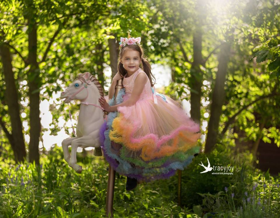 rainbow princess dress on a carousel pony