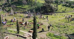 Planting trees at Arboretum Marbella