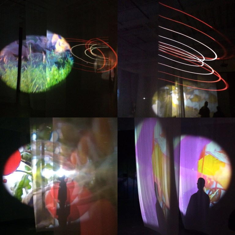 pipilotti-rist-administrating-eternity-2011-video