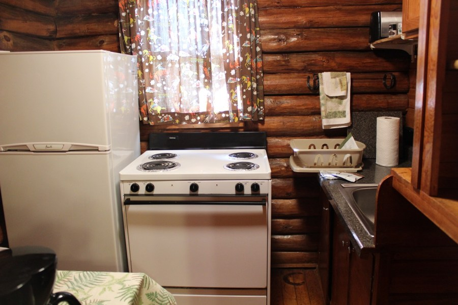 Lodestone Motel Cabin Kitchen in Hill City, SD