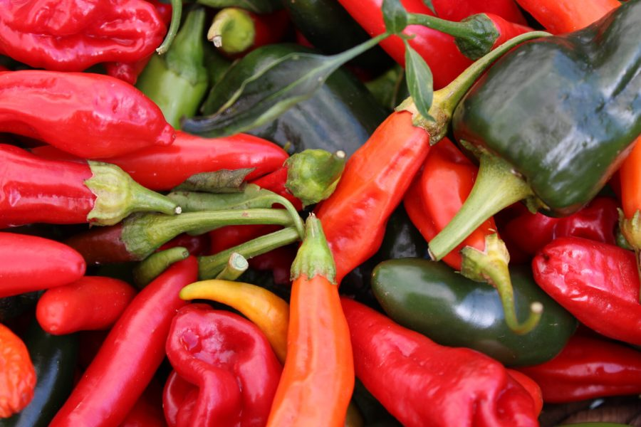 Peppers at the Ojai Farmer's Market