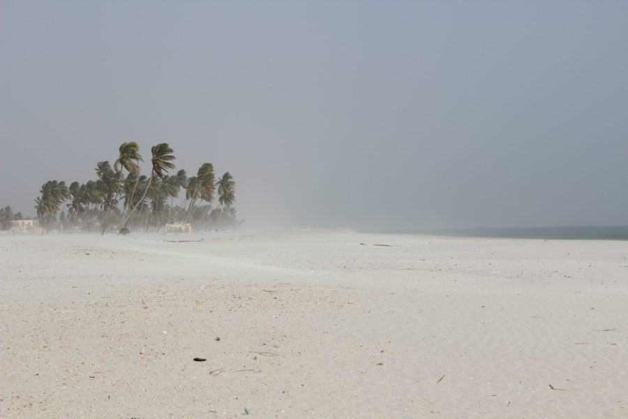 A dusty Salalah in two days