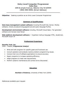 click here to download the entry level computer programmer resume