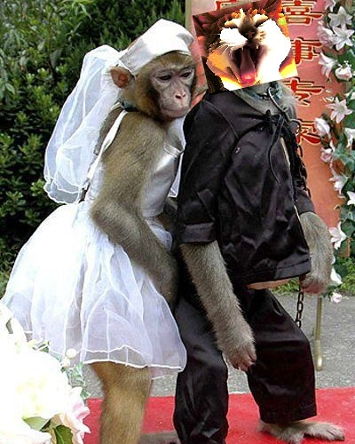 Fil-N-Inny During Their Wedding Reception! What a Happy Couple!